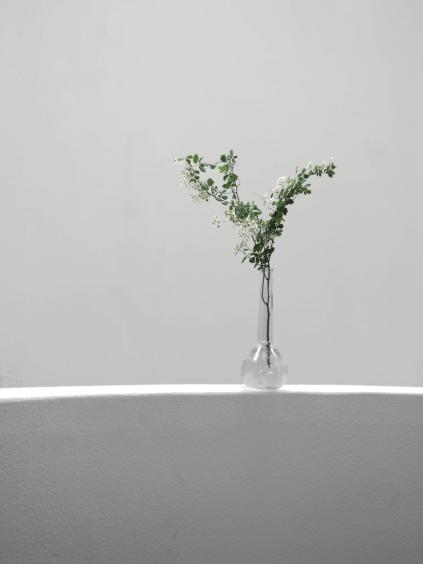 20090608 varia2 010 bloem