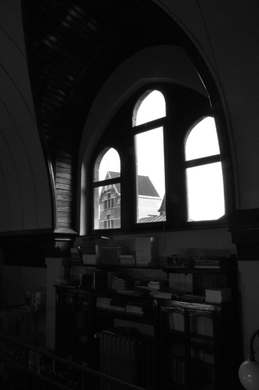 Rommelaere_bibliotheek1 053